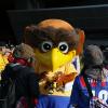 [NGTV] Le magazine du football japonais : Épisode 5